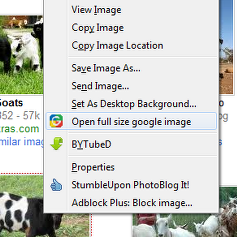 Easy way to get full size pictures on Google Image Search