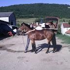 Anita (jeune cavalière, galop 7), et Quatre de cœur, sa jument, achetée au Haras a l'age de 5ans. Cavalière du haras, elle sort sa ponette en épreuves club et amateur. Bosseuse, elle espère atteindre un gros niveau de Compétition dans le futur, et le plus tôt sera le mieux !