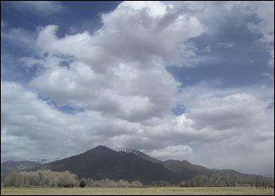 TaosMountainstreesW