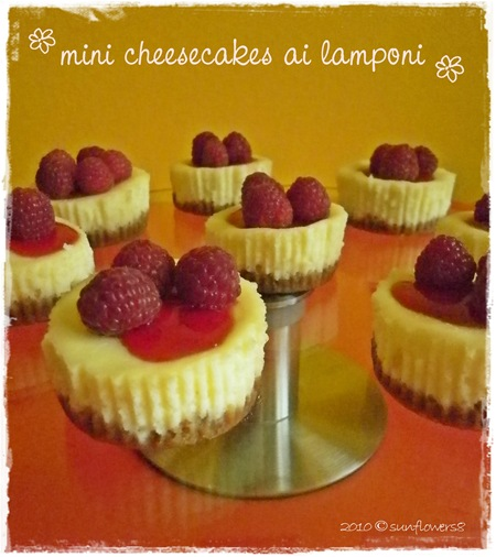 Mini cheeesecake ai lamponi
