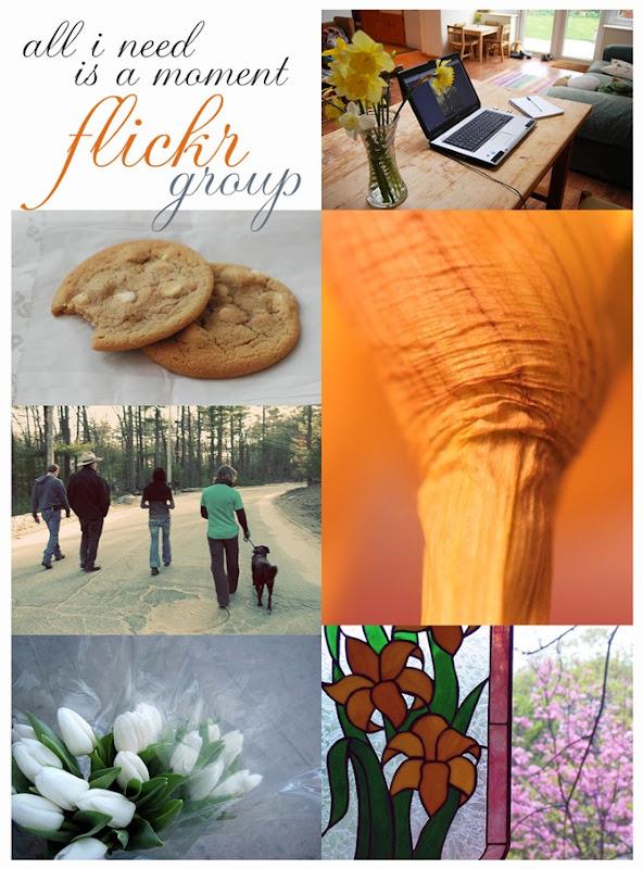 Week 18 flickr group copy