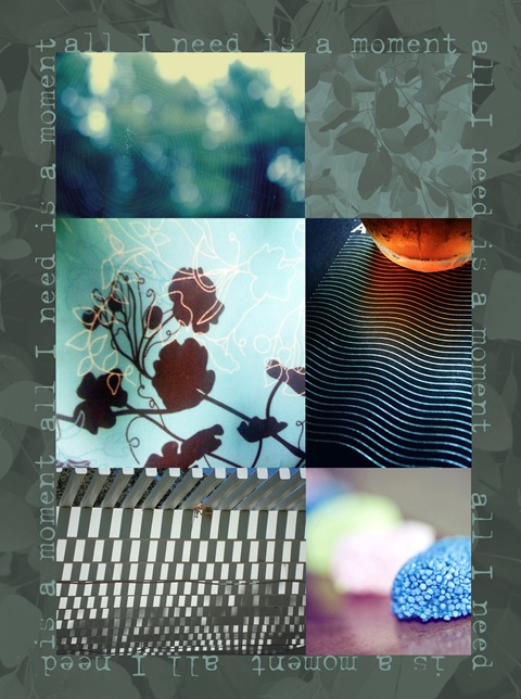 Week 41 mosaic copy