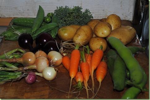 grönsaker rätt ifrån trädgården