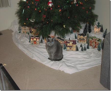 Christmas Tree 2008 073
