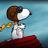 snoopy-aviator.jpg