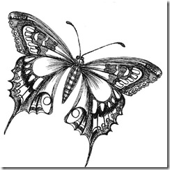 ButterflyDrawing