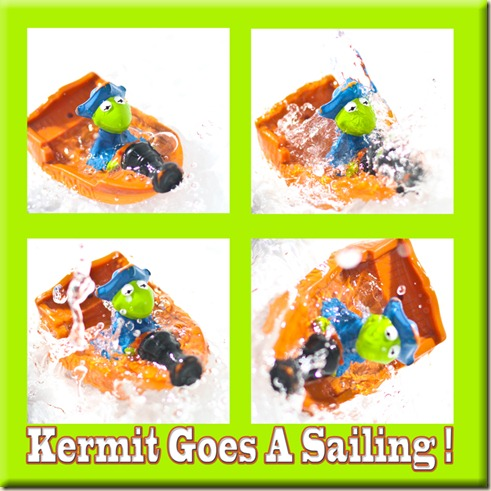 Kermit rs