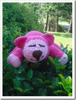 PinkyfaceDSC03080