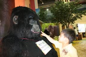 這黑猩猩老實說做得真醜…祐祐連他的鼻孔都不敢挖,怕真的挖出鼻屎來。