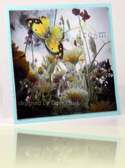 TLC224 Dream Flowers and Butterflies