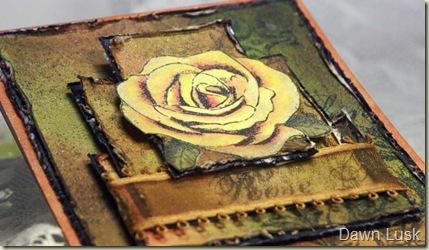 SC Layered Rose clsup