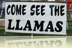 ComeSeeLlamas crp