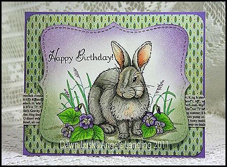 TLC317 Bunny Birthday