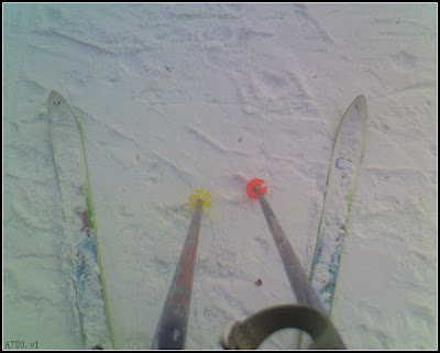 个人装备:雪杖和雪板