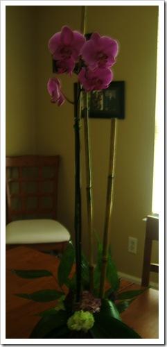 wilkerson flowers