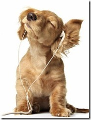 download-dogs-music-wallpaper