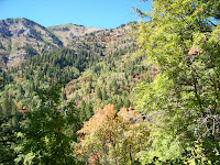 100_0911.JPG (Brachipad Summer Home Area, Utah, United States) Photo