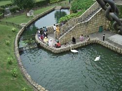 Colmar tropicale pond
