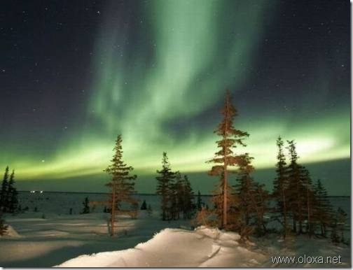 aurora-north-pole-21
