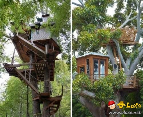 houses-built-in-nature-3