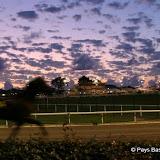 Courses chevaux 63.jpg