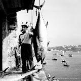 Rouge ou blanc les années fastes de la pêche
