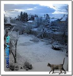 IMG_3775 sne uden pavilion