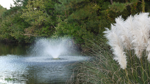 pond fountain - Cape Emerald a gated subdivision in Emerald Isle North Carolina