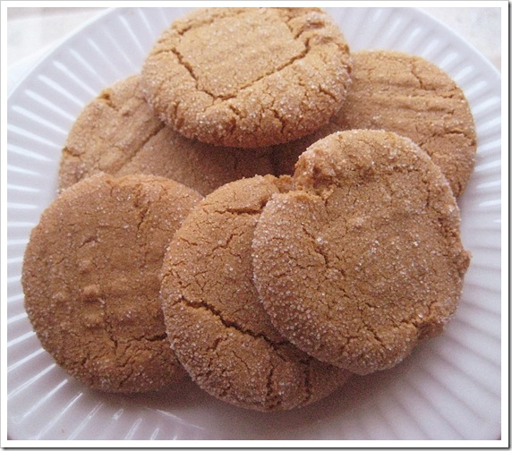 Ginger cookie2_edited