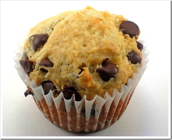Chocolate chip muffin2