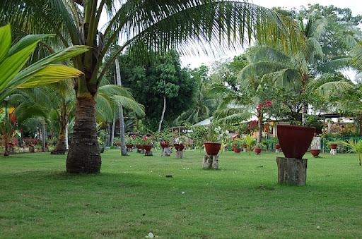 パラダイスアイランドの整備された庭