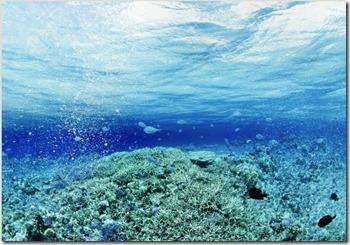 Underwater particles
