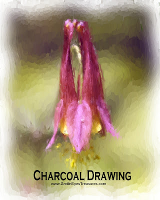 Red Columbine Chalk Photo Drawing