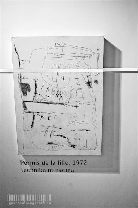 zdjęcia,  muzeum narodowe, galeria starmach, wystawa, Agnieszka Cynarska-Taran