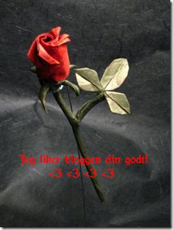 Jeg_liker_bloggen_din!