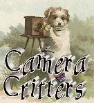 CameraCritters3