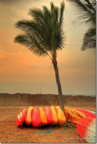 Resting Kayaks