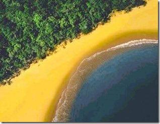 bandeira_brasil_simulada
