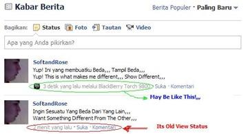 FB Status View