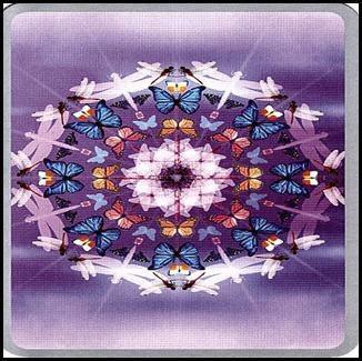 Mandala-du-papillon-et-de-la-libellule-06-01-2010-11-11-27