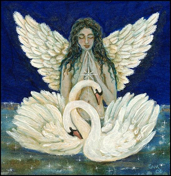 swan angelLG