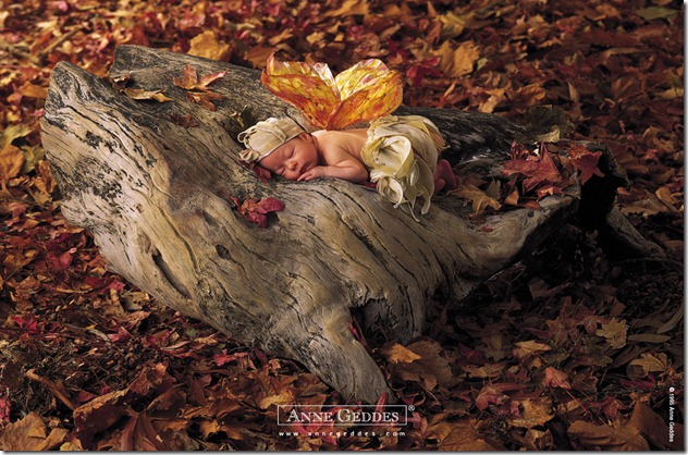 Child by Anne Geddes 02