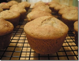 multigrain apple muffins
