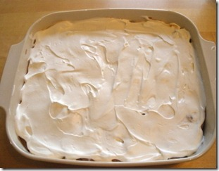 Chocolate cake dessert 3