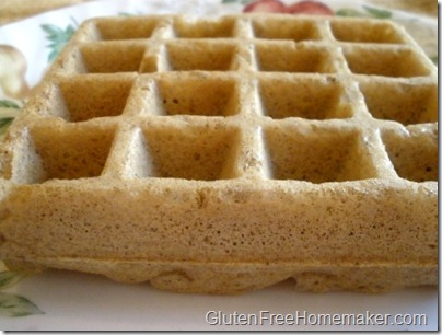 multigrain waffle on plate