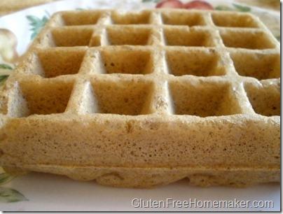 multigrain waffle on plate
