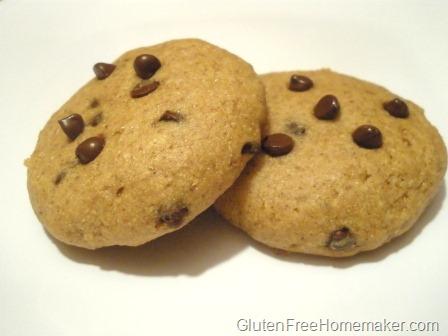 [pumpkin chocolate chip cookies[13].jpg]
