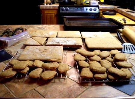 [Gina's gingerbread[4].jpg]