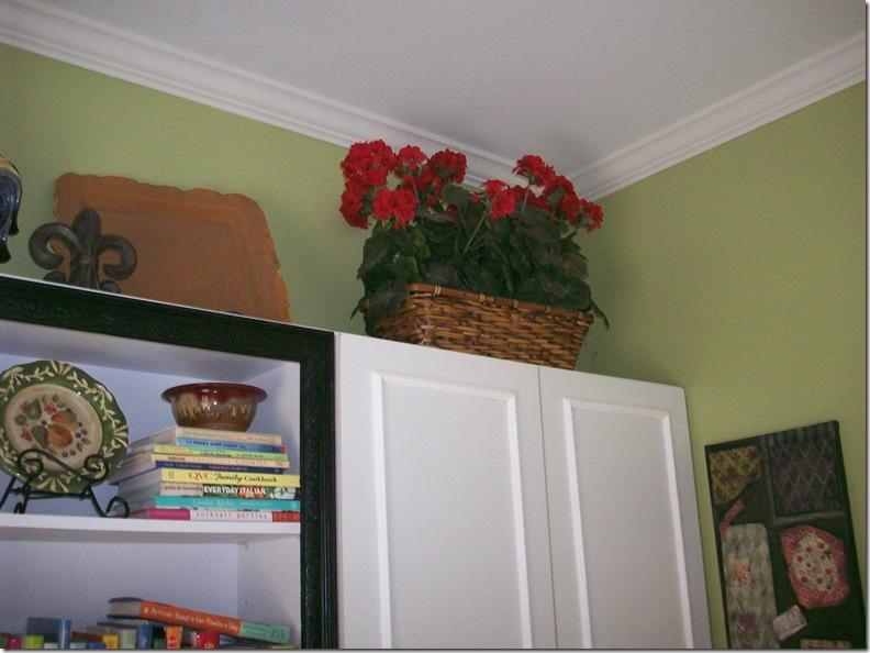 geraniums 005