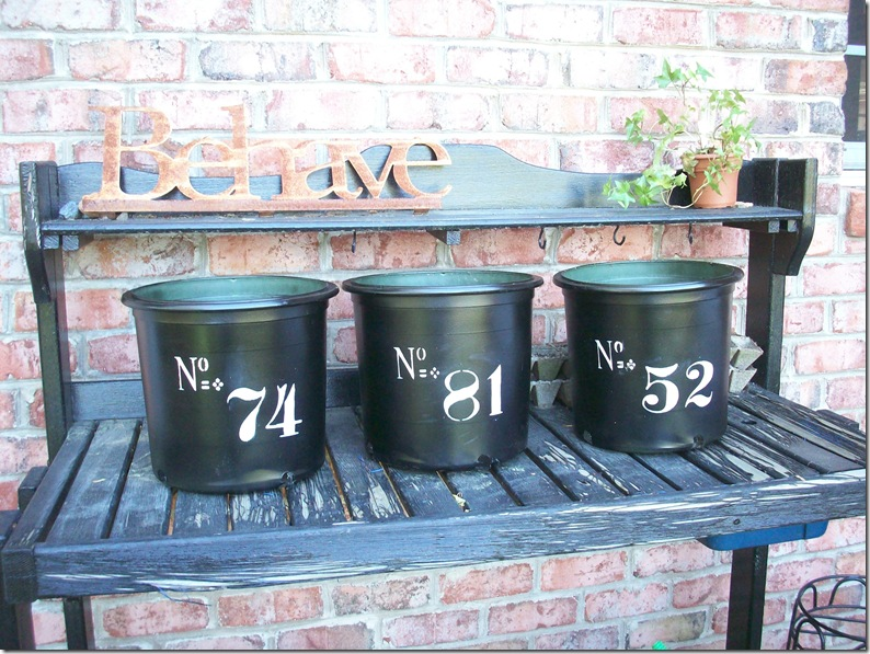 Flower Pots 011